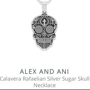 Alex and Ani Skull Necklace